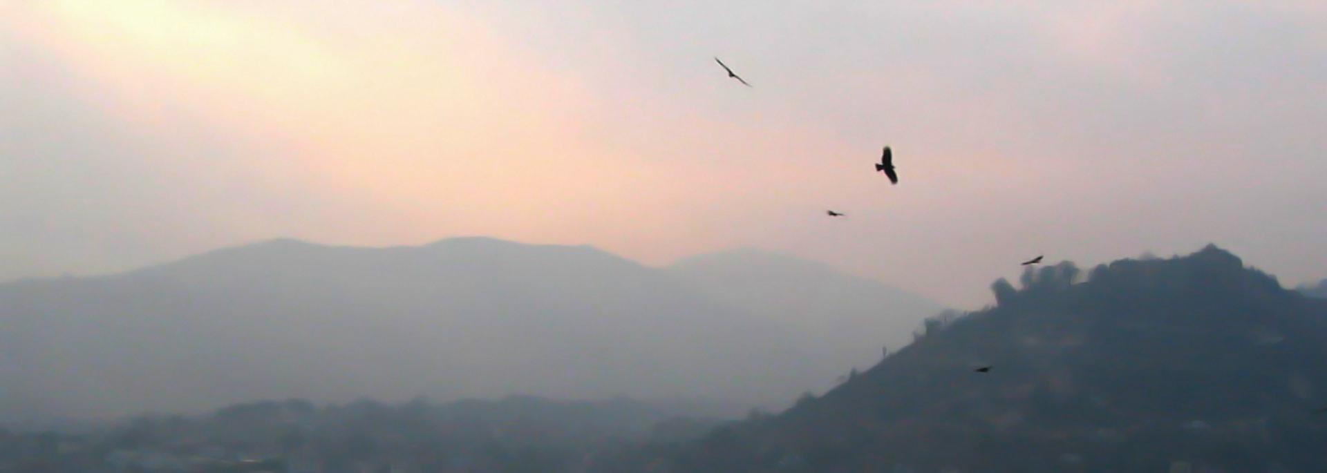 Wie mir beim Anblick des nebligen Abgrunds im Himalaya übel wurde