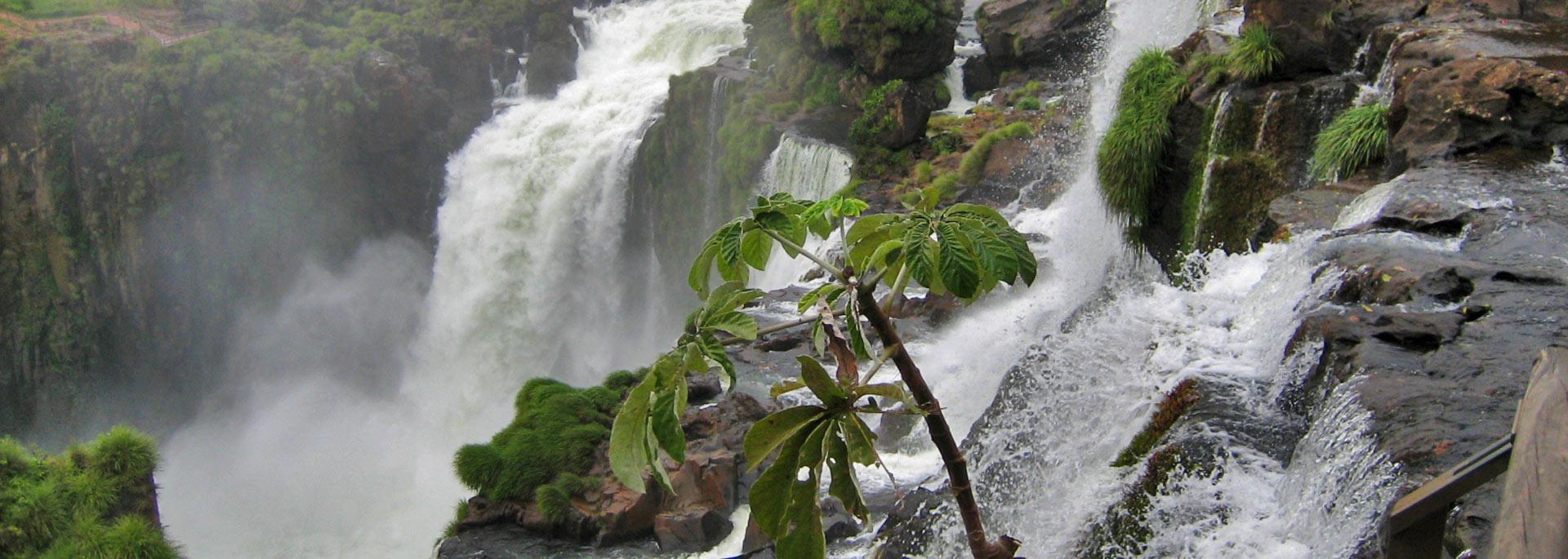 Fotos: Iguazu Wasserfälle