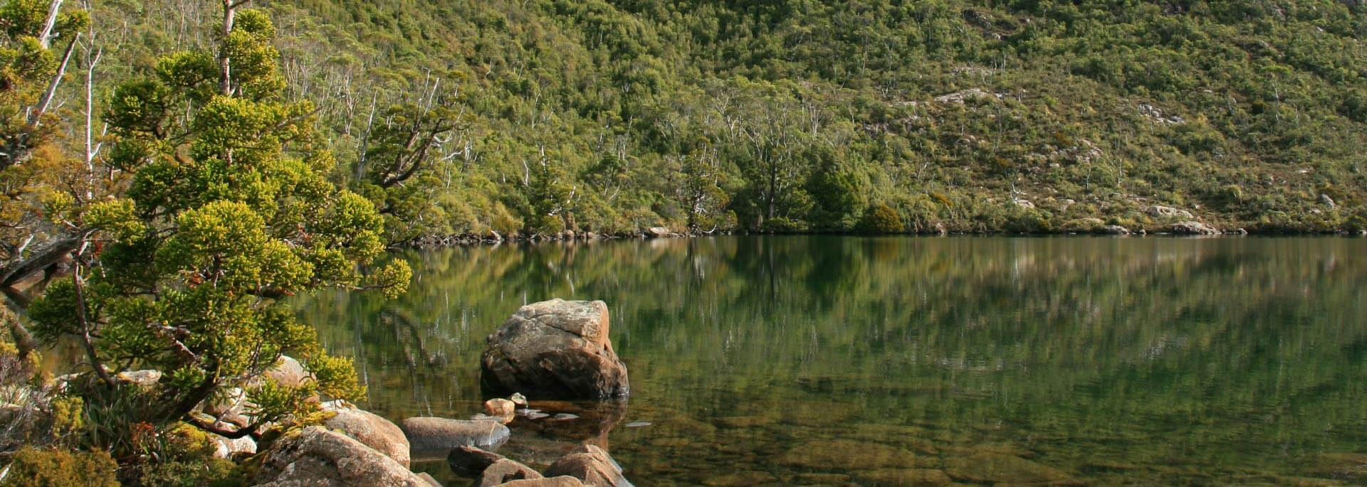 Wie ich Walpurgisnacht im australischen Hartz verbrachte