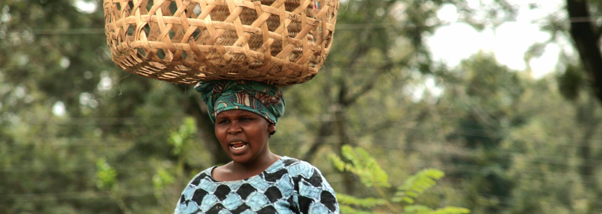 Wie ich in Tansania echt starken Kaffee trank