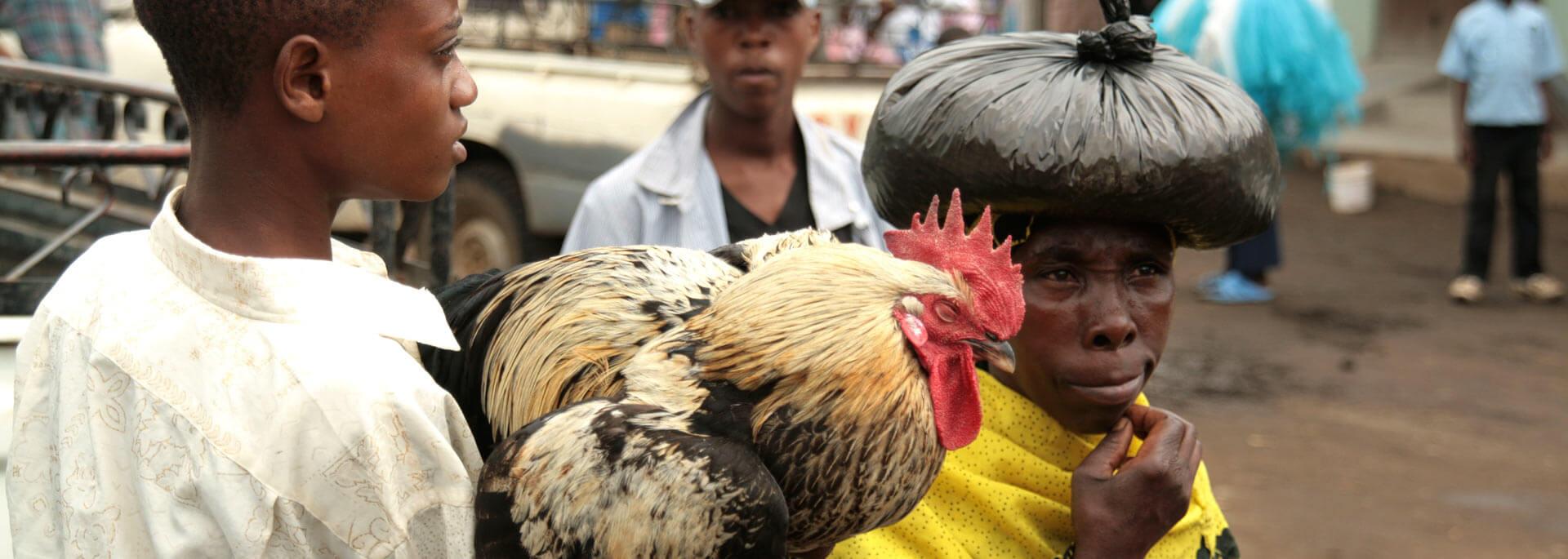 Fotos: Markttreiben in Tansania