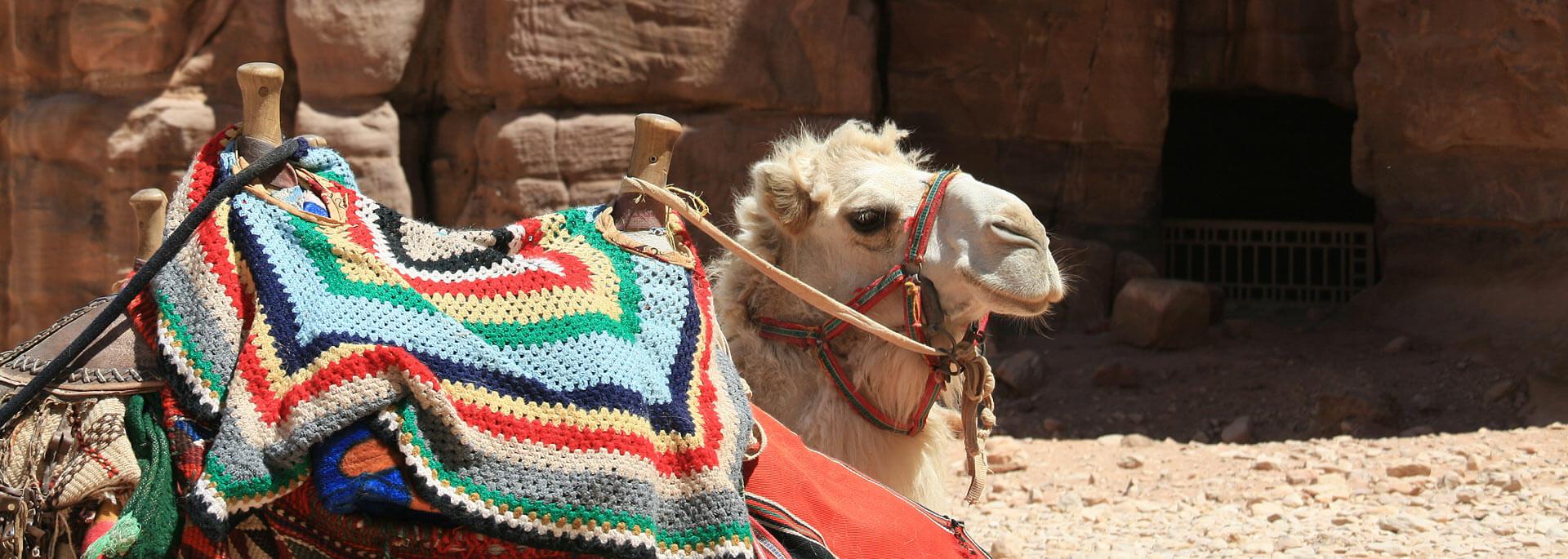 Fotos: Jordanien - Wadis, Wüsten & Meere