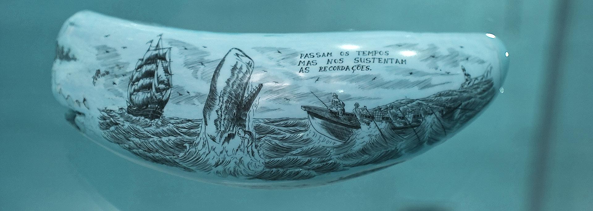 Scrimshaw - Aussterbendes Handwerk von den Azoren