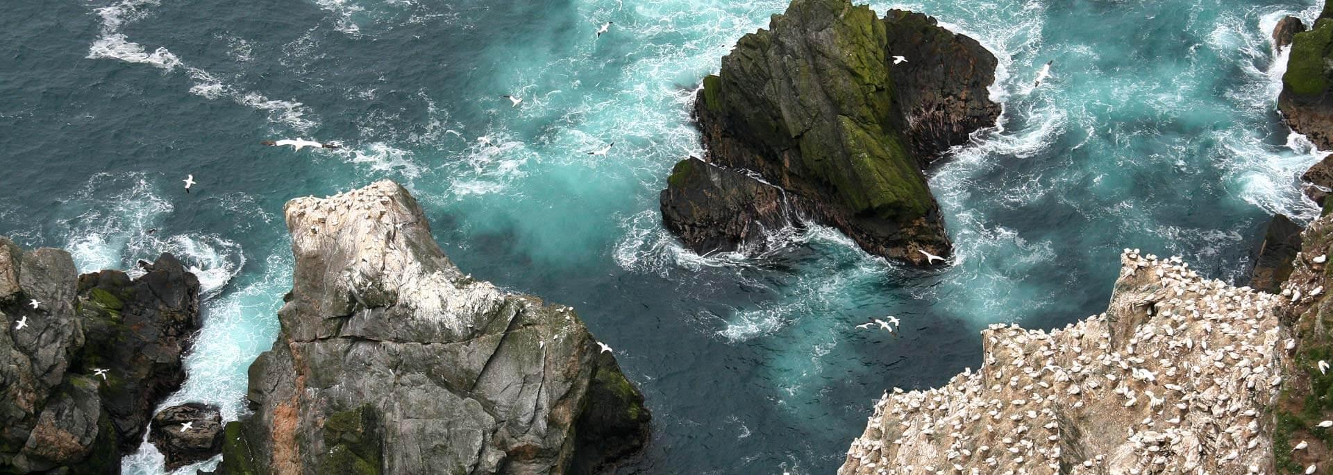 Reiseführer: Dumont Orkney & Shetland