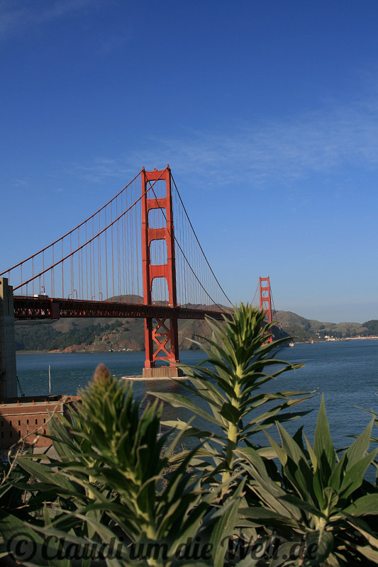 fotos golden gate bridge in san francisco fotos san. Black Bedroom Furniture Sets. Home Design Ideas