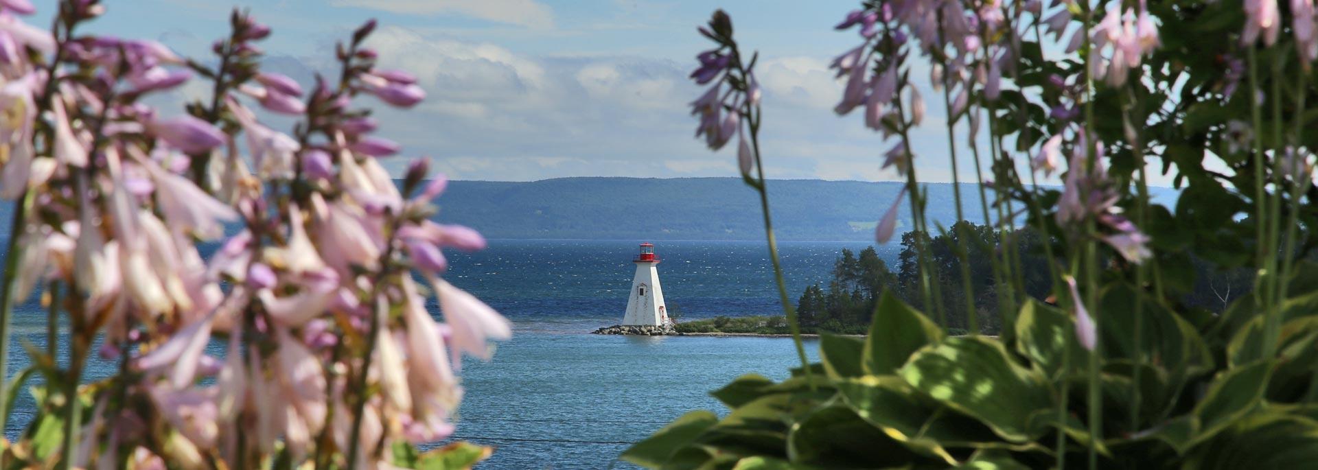 Ohne Telefon zu Herrn Bell und den Elchen der Breton Highlands