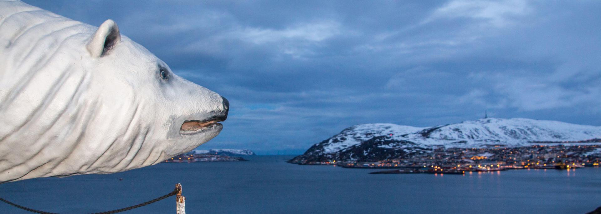 Wie ich in Hammerfest in den Eisbärenclub eintrat