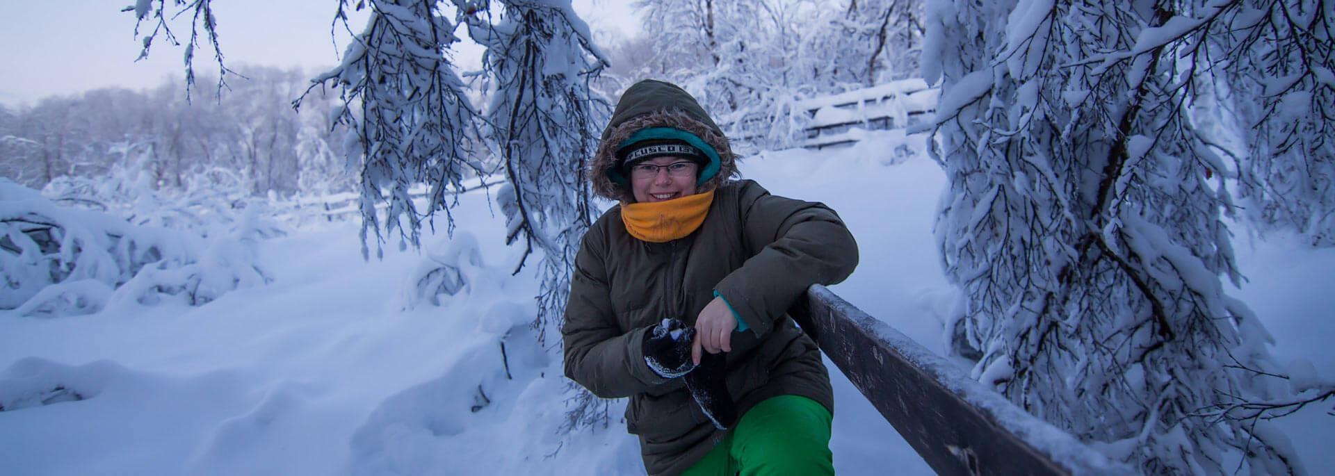 Ein Tag im rosa Dämmerlicht Lapplands